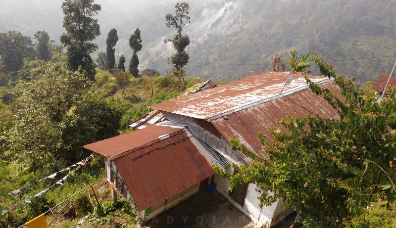 Chukha View