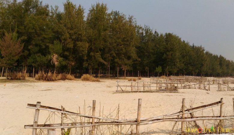 Beautiful Hijli beach
