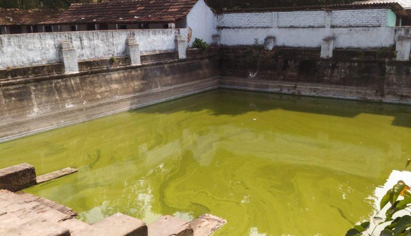 Hijli Sharif Pool